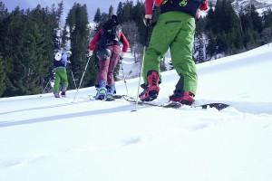 splittboard_tageskurs
